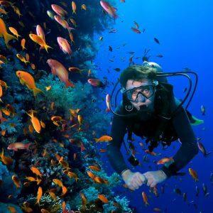 scuba diving in kovalam